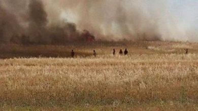 Photo of Le Kef: Un incendie détruit environ 10 hectares de blés et de résidus de moisson à Sakiet Sidi Youssef