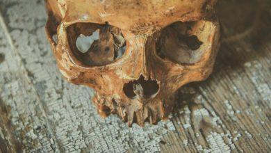 Photo of Au Togo, un homme arrêté avec en sa possession… des crânes humains!
