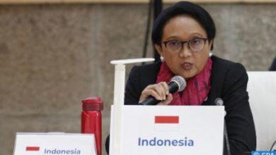 Photo of Maroc-Indonésie: Une coopération pour lutter contre le Covid-19 en Afrique