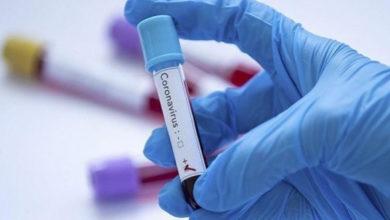 Photo de Coronavirus: 117 nouveaux cas, 135 guérisons et 12 décès en Algérie durant les dernières 24 heures