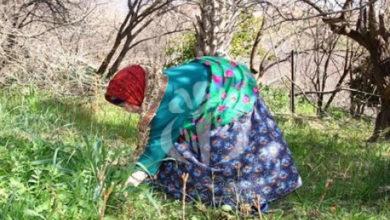 Photo of Algérie -Plusieurs mesures en faveur des jeunes et des femmes rurales