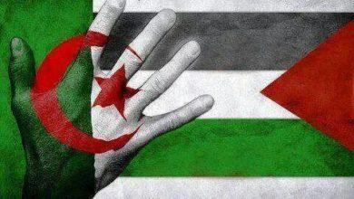 Photo of Le mouvement El Bina réaffirme son soutien à la position de l'Algérie en faveur de la cause palestinienne
