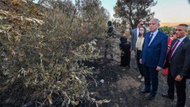 Photo of Saied inspecte les dégâts de l'incendie perpétré à Djebel Amdoun