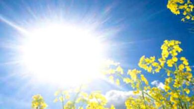 Photo of Tunisie -Météo : températures en hausse