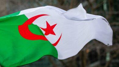 Photo de Algérie -Amendement constitutionnel : mettre l'Algérie à l'abri de toutes formes de fitna, de violence et d'extrémisme