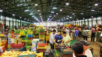 Photo of Tunisie -Marché du gros de Bir El Kassaa: Hausse des prix de la plupart des légumes et poissons en décembre 2020