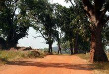 Photo de Burkina Faso: Plus de 237.000 nouveaux déplacés depuis le début de l'année