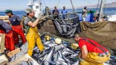 Photo de Accords de pêche avec l'UE : la justice rend une décision défavorable pour le Maroc