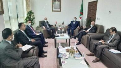Photo de Algérie-Egypte: Rezig plaide pour le renforcement de la coopération bilatérale